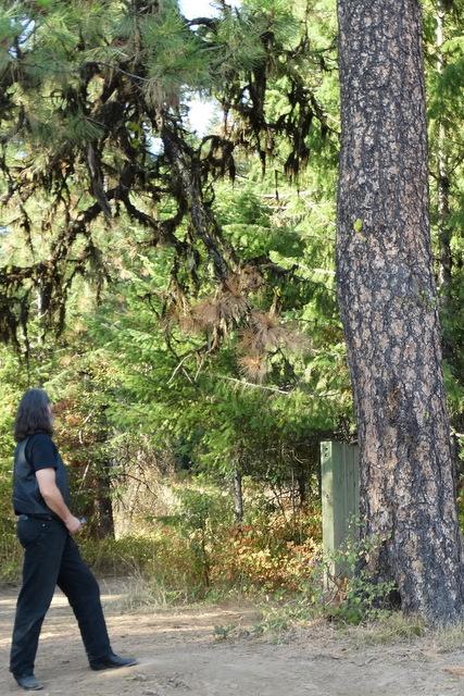 Mark admiring nature