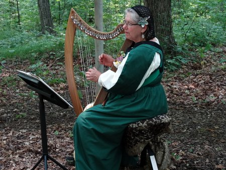 This harpist was playing with them and she told us a little about the kind of harp she was playing.
