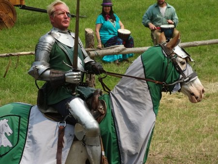 I chose the green knight because my birthstone is an emerald.  Besides, he had a great sense of humor!