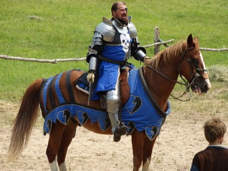 Mark chose the blue knight because blue is his favorite color.