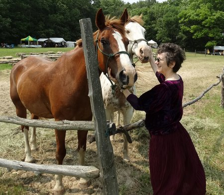 I went to visit the horses after lunch.