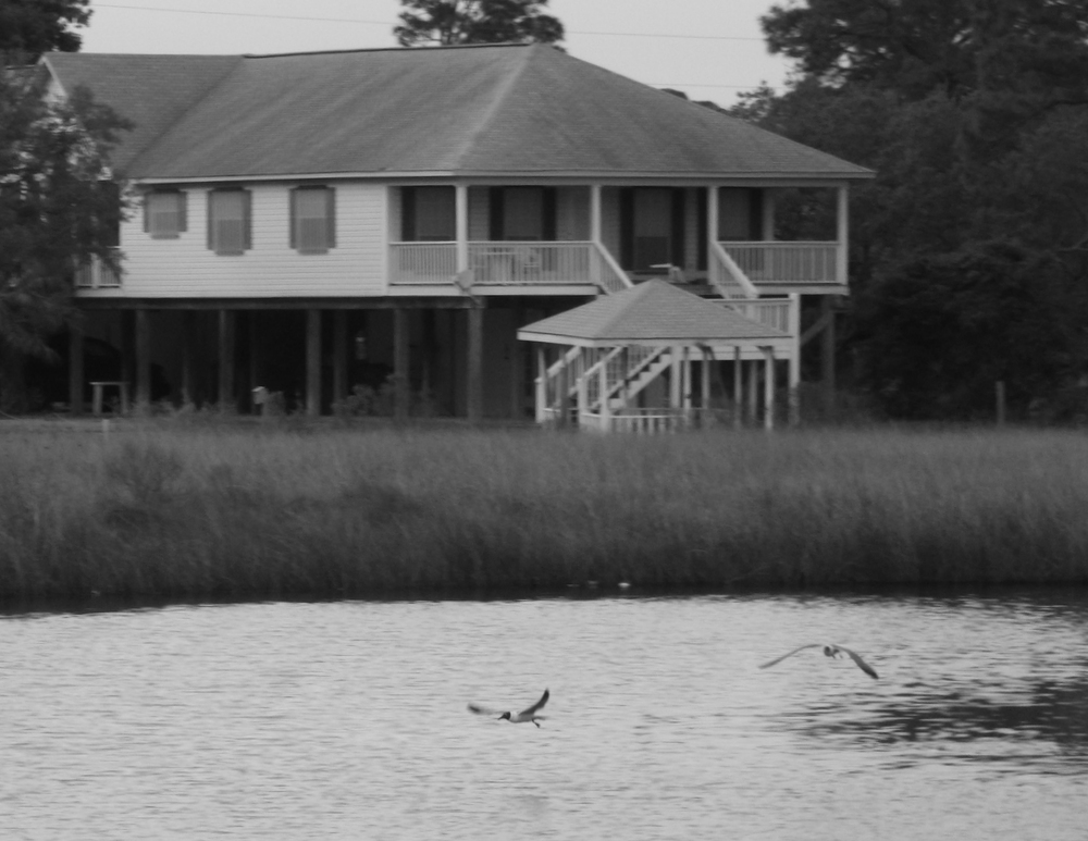 The inlet outside the window at the restaurant.  I tried black and white because there wasn't much color in the picture anyway.